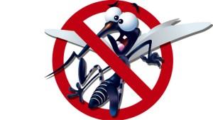 Mosquito_da_dengue_Saiba_os_sintomas_topo