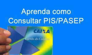 Como_consultar_o_PIS_pela_internet_capa