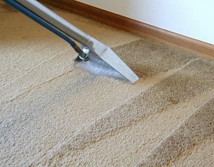 Dicas de como fazer limpeza de carpete