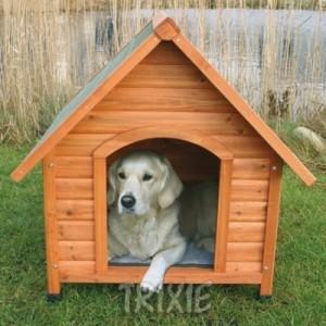 Dicas e fotos de Casinha de cachorro 2