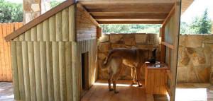 Dicas e fotos de Casinha de cachorro 6