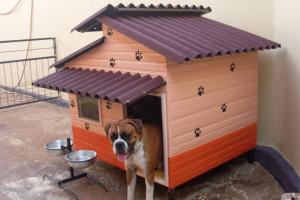 Dicas e fotos de Casinha de cachorro 9