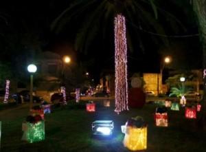 Dicas Enfeites de Natal para Jardim 10