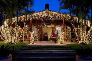 Dicas Enfeites de Natal para Jardim 11