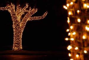 Dicas Enfeites de Natal para Jardim 12