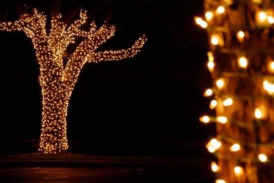 enfeites jardim natal:Dicas Enfeites de Natal para Jardim