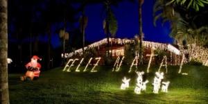 Dicas Enfeites de Natal para Jardim 2