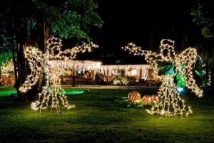 Dicas Enfeites de Natal para Jardim 3