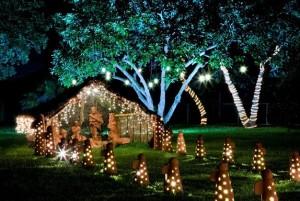 Dicas Enfeites de Natal para Jardim 4