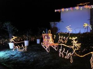 Dicas Enfeites de Natal para Jardim 8