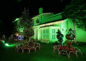 Dicas Enfeites de Natal para Jardim 9