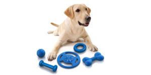 comprar brinquedos para cachorro barato 2