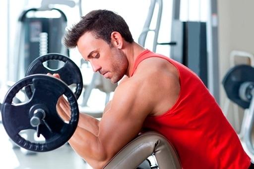 massa muscular como ganhar