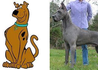 Raças Dos Cachorros Dos Desenhos Animados